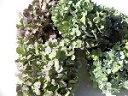 ドライフラワー花材 アジサイ・色混合