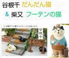 日本の夏浅草雷門うとうと猫・富士猫・黒猫カメラマン