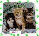 (^O^)/大人気!!新作!!メルヘンの世界へどうぞ*,.,.,.,.*クッションカバー なかよし・3匹の猫~~☆! *サイズ 45 X 45(cm) 一点のみ…