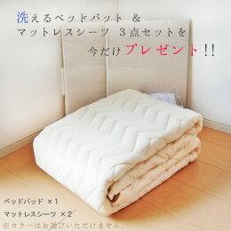 フランスベッドベッドマットレスクラウディアシングル片面タイプブレスエアー/CL-BAEシルキー