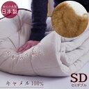 Camel pad sd