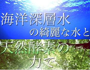犬入浴剤無香料犬・猫用(汚れ・お風呂用)500ml【Neugierケアシリーズ】