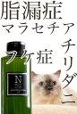 スキンケア 水のいらないシャンプースキンケア グルーミングローション 無香料犬・猫用(汚れ・マッサージ用) 200ml