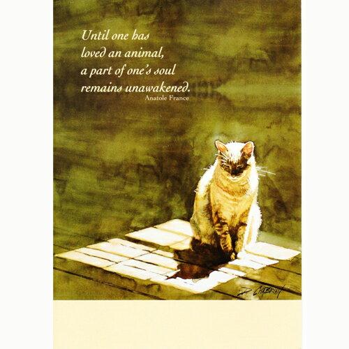 猫のペットお悔やみカード デボラ・シャブリアン☆陽だまりの中で