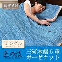 Mikawa_ket-mian1