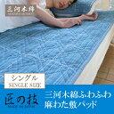Mikawa_sikipad-main4