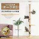 天然木 キャットタワー 突っ張り 突っ張り式キャットタワー 猫タワー 248cm 猫 猫用品 キャット スリム ペット クリア…