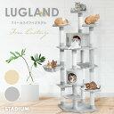 キャットタワー LUGLAND 猫タワー 猫 キャット cat 低ホルムで匂わない 多頭飼い 子猫 大型 頑丈 ハンモック付 ペット…
