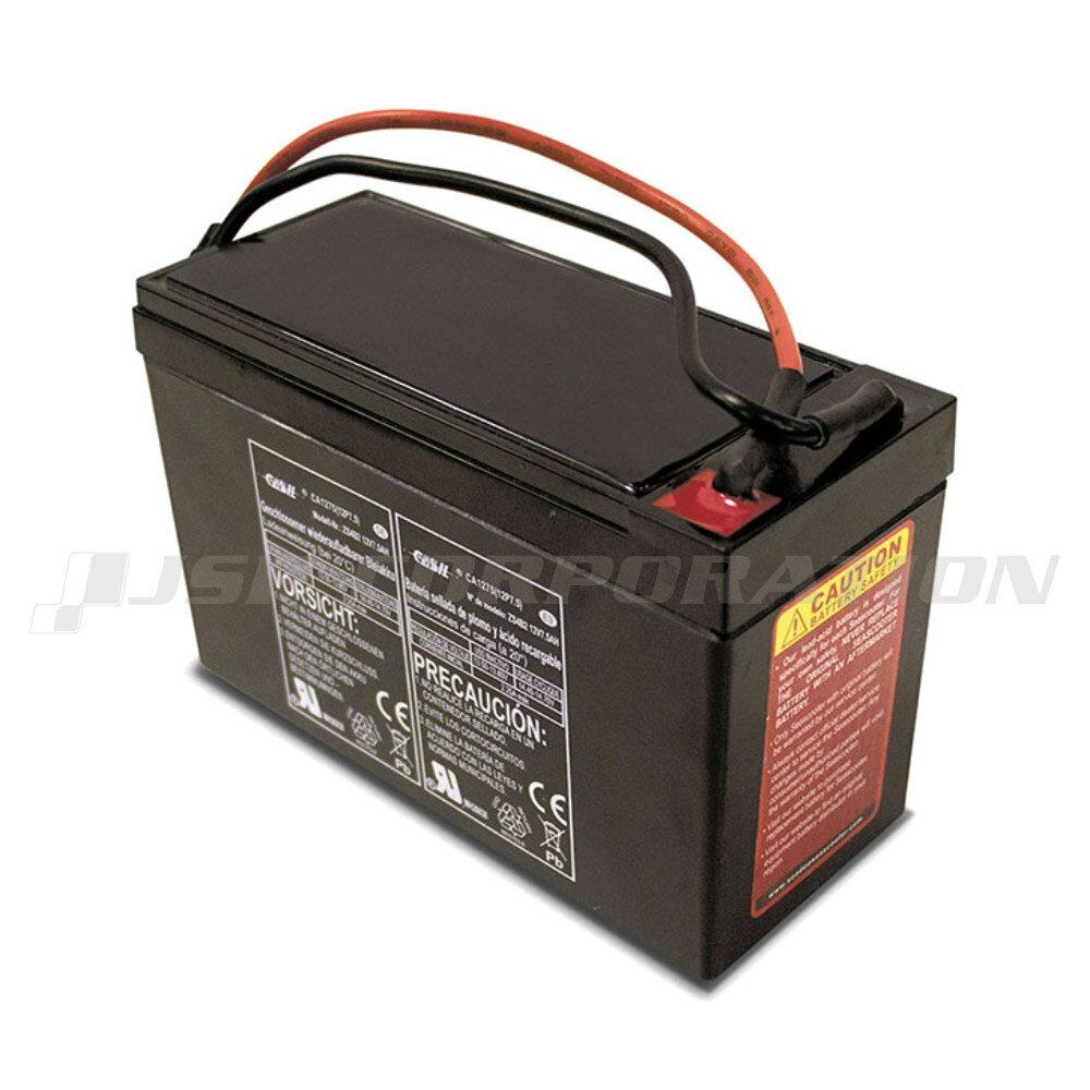 【楽天カード決済&エントリーでポイント最大9倍】SEA-DOOバッテリーシースクーター用 SD5542M/SD59001M専用 ZS08 12V/7.5Ah