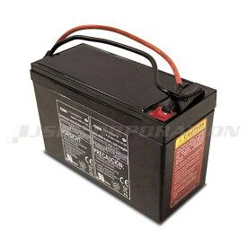 SEA-DOOバッテリーシースクーター用 SD5542M/SD59001M専用 ZS08 12V/7.5Ah
