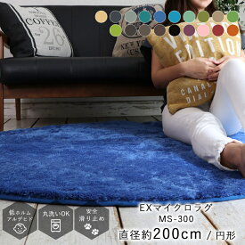 【処分SALE価格】ラグ ラグマット 北欧 カーペット 洗える ラグマット グリーン グレー neore / EXマイクロファイバーラグ 円形 直径200cm