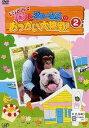パン&ジェームズのお使い大挑戦! 2[DVD] / パンくんとジェームズ