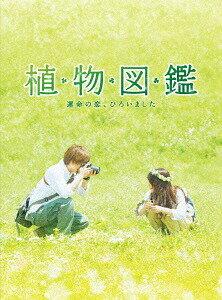 植物図鑑 運命の恋、ひろいました 豪華版 [初回限定生産][DVD] / 邦画