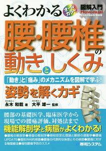 [書籍のゆうメール同梱は2冊まで]/よくわかる腰・腰椎の動きとしくみ 「動き」と「痛み」のメカニズムを図解で学ぶ! 姿勢を解くカギ[本/雑誌] (図解入門:How‐nual Visual Guide Book) / 永木和載/著
