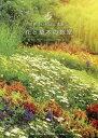 世界でいちばん素敵な花と草木の教室[本/雑誌] / 遠藤芳文/企画文 稲垣栄洋/監修