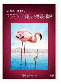 ディズニーネイチャー/フラミンゴに隠された地球の秘密[DVD] / 洋画