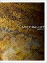 relics [Blu-spec CD2] [4CD+Blu-ray/完全生産限定盤][CD] / SOFT BALLET