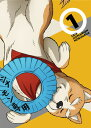 織田シナモン信長 1[DVD] / アニメ