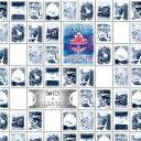 ポインツ・オヴ・ライブレイション[CD] [SHM-CD] / アジア・ミノール