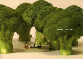 MINIATURE LIFE Conceptual art of MINIATURE CALENDAR[本/雑誌] (単行本・ムック) / MINIATURECALENDAR/写真・編集・デザイン