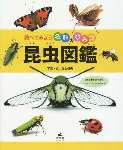 昆虫図鑑[本/雑誌] (調べてみよう名前のひみつ) / 森上信夫/写真・文