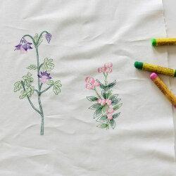 【コットン】Color_Wild_flower_ワイルドフラワーイラストカットコットン