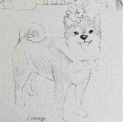 【リネン】スケッチまめしば(VH-DTP_Sketch_Mameshiba)
