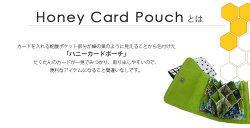 【お買い得キット】ハニーカードポーチキット(レシピ付)