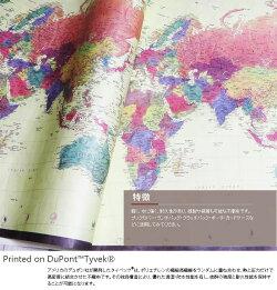 世界地図(デュポン(TM)タイベック(R)に印刷しました)