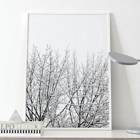 Coco Lapine Design SNOWY TREE アートプリントポスター 50x70cm ベルギー/ドイツ