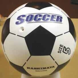 5号 カラフルサッカーボール(2色から選べます)