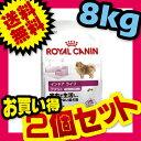 【お得な2個セット】 ロイヤルカナン インドア ライフ アダルト 8kg×2個セット ROYAL CANIN [3182550849654…