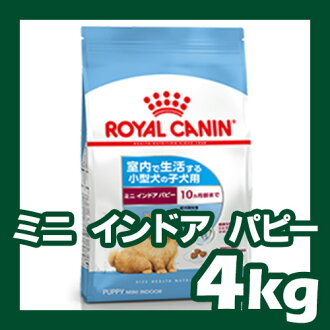Genuine ★ Royal Canin mini indoor junior age 10 until the months-old indoor breeding small dogs 4 kg ★