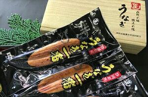 国産 静岡県産 うなぎ の 蒲焼 120g×2 (タレ+山椒付き)特選