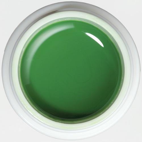 パラジェル ナチュラルライン マットカラー ジェル M010 リーフグリーン / 4g