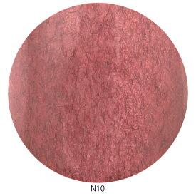 Raygel レイジェル カラージェル ニットベール N10 (アンティークレッド) / 4g (定形外 対応)