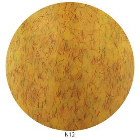 Raygel レイジェル カラージェル ニットベール N12 (マリーゴールド) / 4g (定形外 対応)