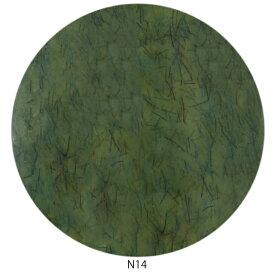 Raygel レイジェル カラージェル ニットベール N14 (アーミーグリーン) / 4g (定形外 対応)
