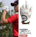 羊皮 本革 ゴルフグローブ メンズ 【2枚1組】 左手用 ゴルフ手袋 フィット感 ホワイト 【NewEdition GOLF】5サイズ ホワイト NEG-1420