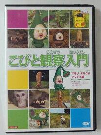 ZD47426【中古】【DVD】こびと観察入門 マモリ アマクリ シシャワオドリ編