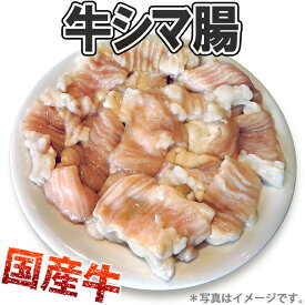 【冷凍】牛シマ腸 500gパック