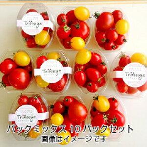トマト ミニトマト 新鮮 生産者から直送 宅配便なら送料無料 今が旬美味しい季節 ミディトマト(赤)、ミニトマト(赤・黄)が1つのカップに入ったパックミックス とってもお得な10パ