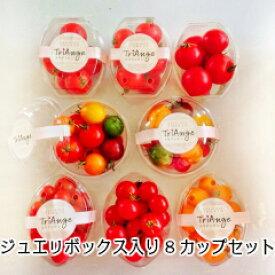 ミニトマト トマト 父の日 新鮮 生産者から直送  宅配便なら全国送料無料  贈りものに最適5色のトマトが入ったジュエリーボックスパックセットお得な8パックセット。ジュエリーボックス2、ミディ3、ミニ2、ミニ(イエロー)1