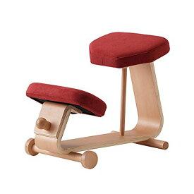 【 sled chair 2 】 SLED-2(RD) / SLED-2-RD / 4933178106013 / 株式会社 弘益