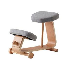 【 sled chair 2 】 SLED-2(GR) / SLED-2-GR / 4933178106037 / 株式会社 弘益