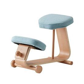 【 sled chair 2 】 SLED-2(LBL) / SLED-2-LBL / 4933178106020 / 株式会社 弘益