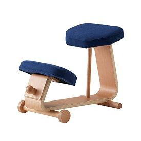 【 sled chair 2 】 SLED-2(NV) / SLED-2-NV / 4933178106006 / 株式会社 弘益