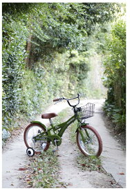 NEW子供用自転車 16インチ BMXタイプ 子供用自転車キッズ幼児車 ローリ◆プレゼント  子供 ROLLING RINGS ローリングリングス 4歳 5歳 6歳