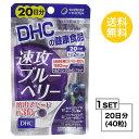 【お試しサプリ】【送料無料】 DHC 速攻ブルーベリー 20日分 (40粒) ディーエイチシー サプリメント ビルベリー ルテイン サプリ
