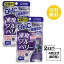 【お試しサプリ】【2個セット】【送料無料】 DHC 速攻ブルーベリー 20日分×2パック (80粒) ディーエイチシー サプ…